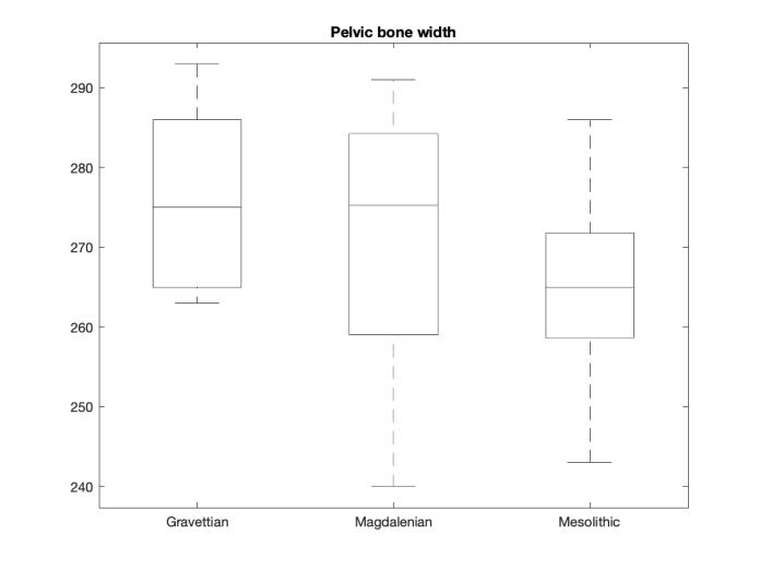 Pelvic_bone_width.png